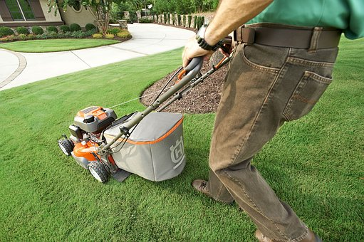 Five Factors to Consider Before Landscaping