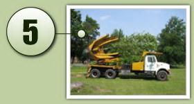 Tree Moving | Caledon Treeland