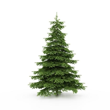 How Many Lights On A Christmas Tree